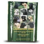 Labradors 2000